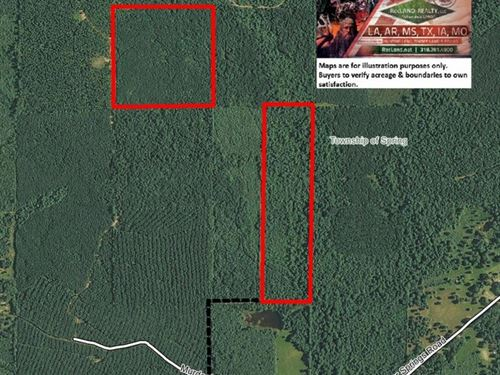 80 Ac - Timberland & Hunting - : Pine Bluff : Jefferson County : Arkansas