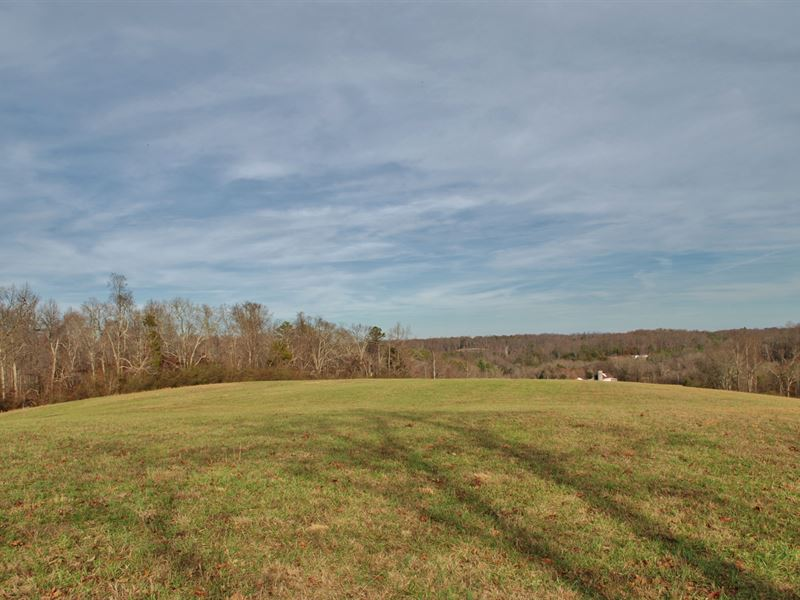 164 Acres Of Beautiful Pastureland : Lenoir City : Knox County : Tennessee