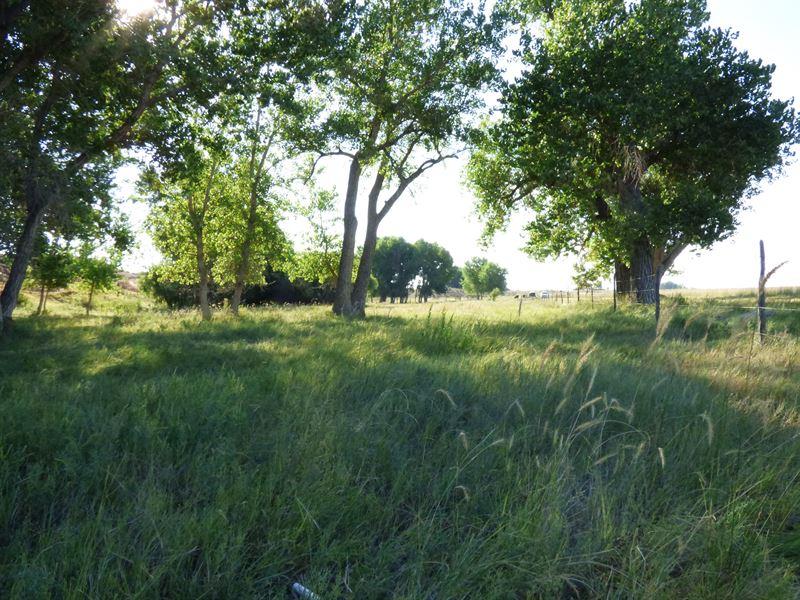 Pueblo County Farm : Boone : Pueblo County : Colorado