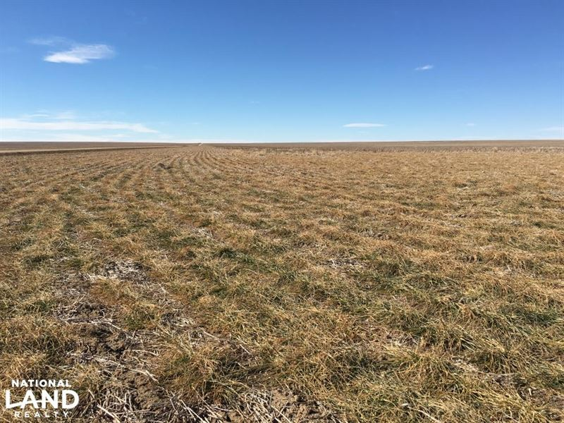 Income Property - Kiowa County Crp : Eads : Kiowa County : Colorado