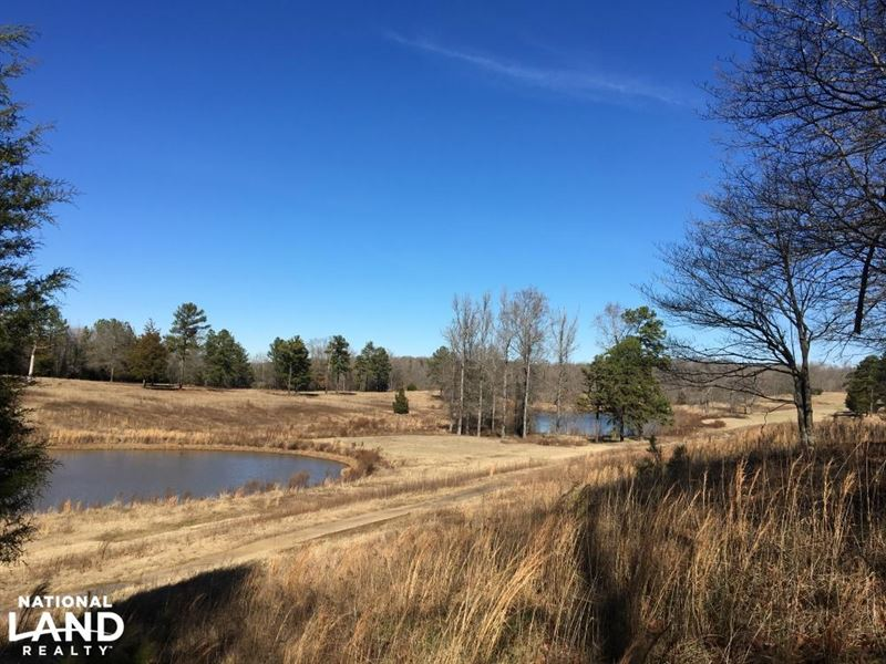 Rolling Open Land With Ponds : Union : Union County : South Carolina