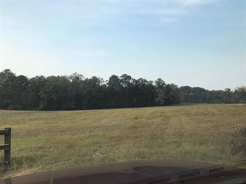 Beautiful Estate Lot : Appling : Columbia County : Georgia