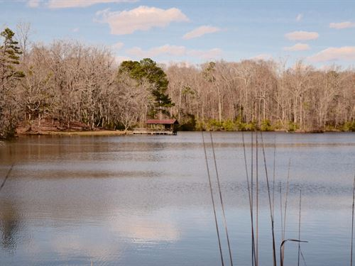 107 Acres, With Lake And Cabin : Ramer : Montgomery County : Alabama