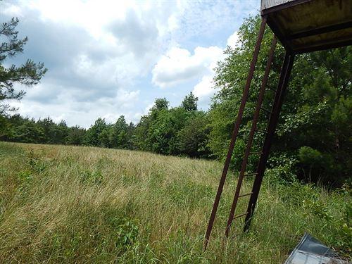 Oak Grove Road 289 -124294 : Prentiss : Jefferson Davis County : Mississippi