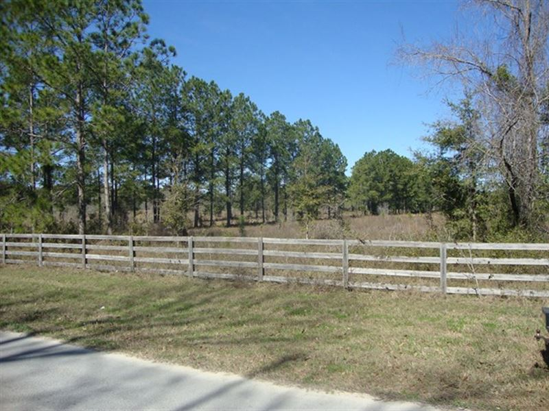 19.01 Acres 773287 : Fanning Springs : Levy County : Florida