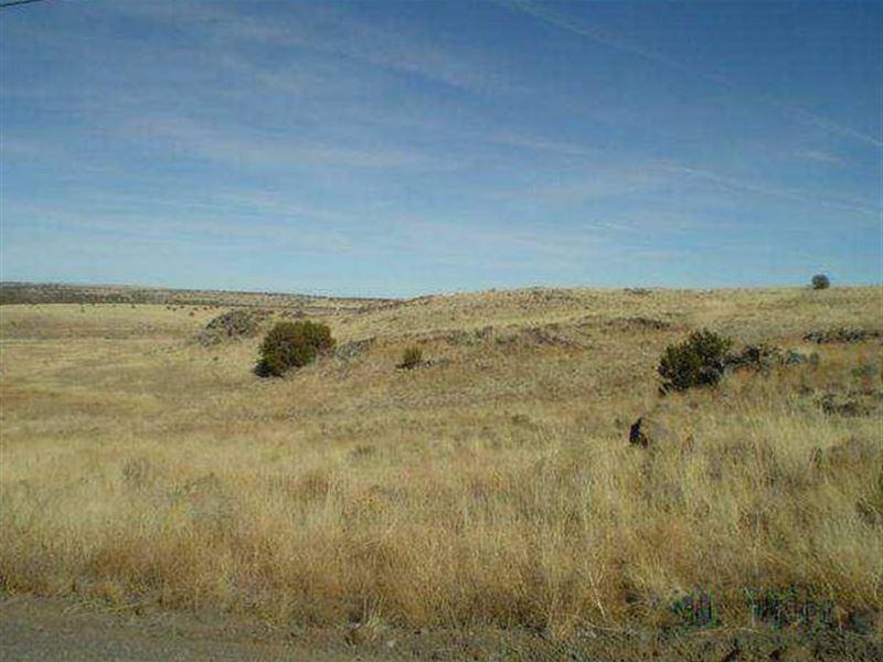 13.33 Acres For Sale : Saint Johns : Apache County : Arizona