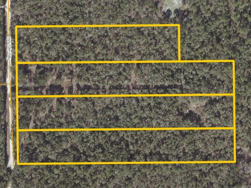 4 Buildable Lots In Bell, Florida : Bell : Gilchrist County : Florida