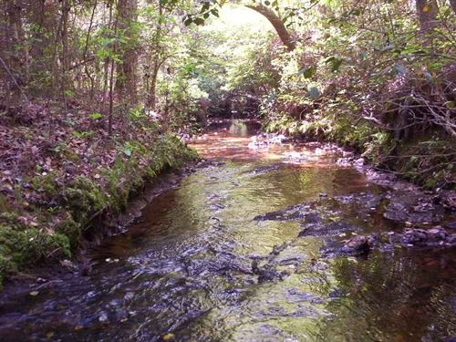 Bill Nicholson Road : Ellerbe : Richmond County : North Carolina