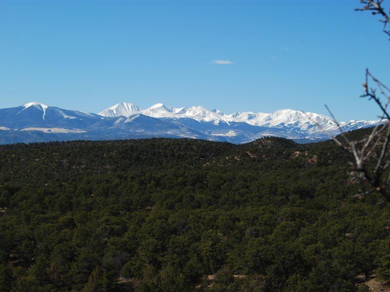 12 Milligan Ranch Borders Blm : Gardner : Huerfano County : Colorado