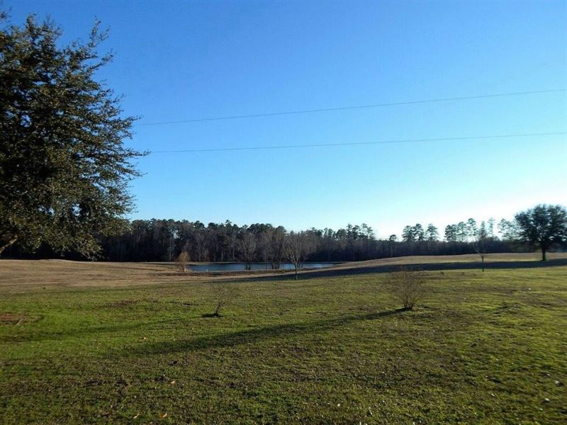 85 Acres W/ Home In Newton County : Newton : Newton County : Mississippi