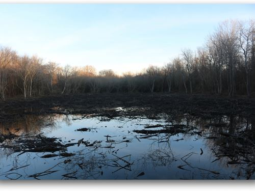 95.6 Acres In Issaquena County : Rolling Fork : Issaquena County : Mississippi