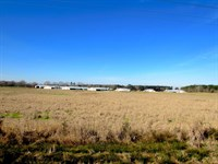 Poultry Farm Land And Home Wayne Co : Waynesboro : Wayne County : Mississippi
