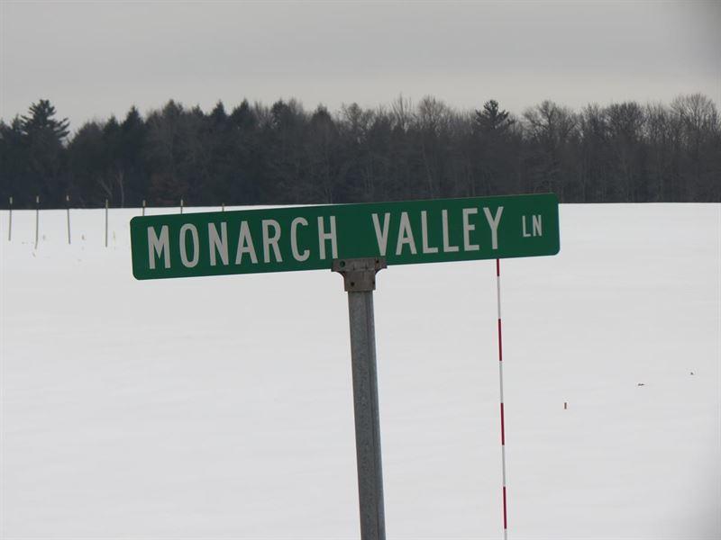 29.70 Acres For Sale In Rosholt : Rosholt : Portage County : Wisconsin