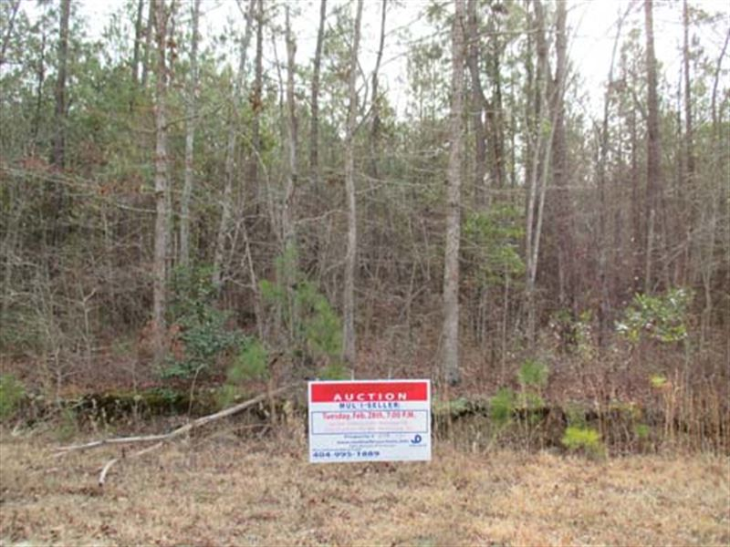 Multi-Seller Auction : Fayetteville : Cumberland County : North Carolina
