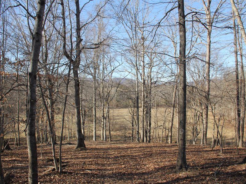 316 Acres Near Charlottesville Va : Keswick : Albemarle County : Virginia