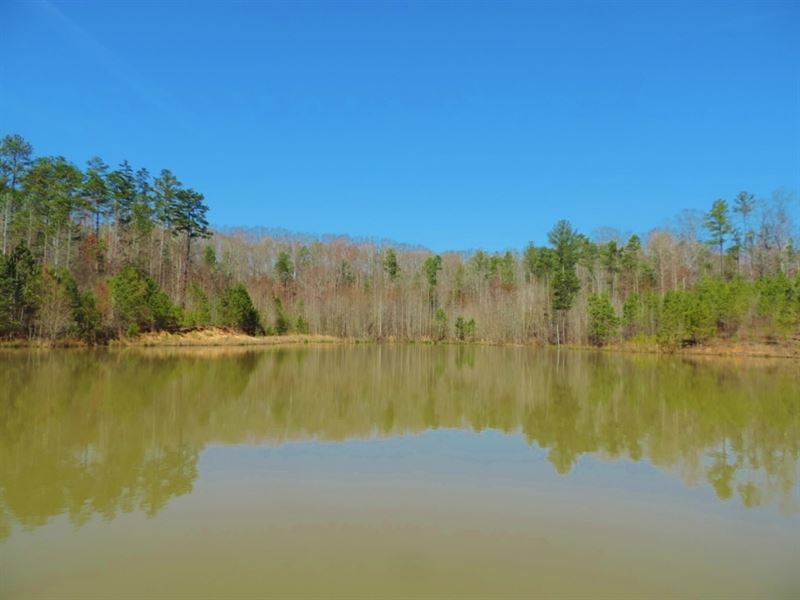 2 Ponds With Timber : Madison : Morgan County : Georgia