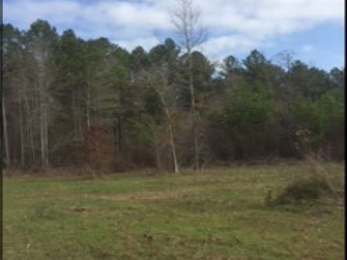 37.5 Acres In Newton County : Collinsville : Newton County : Mississippi
