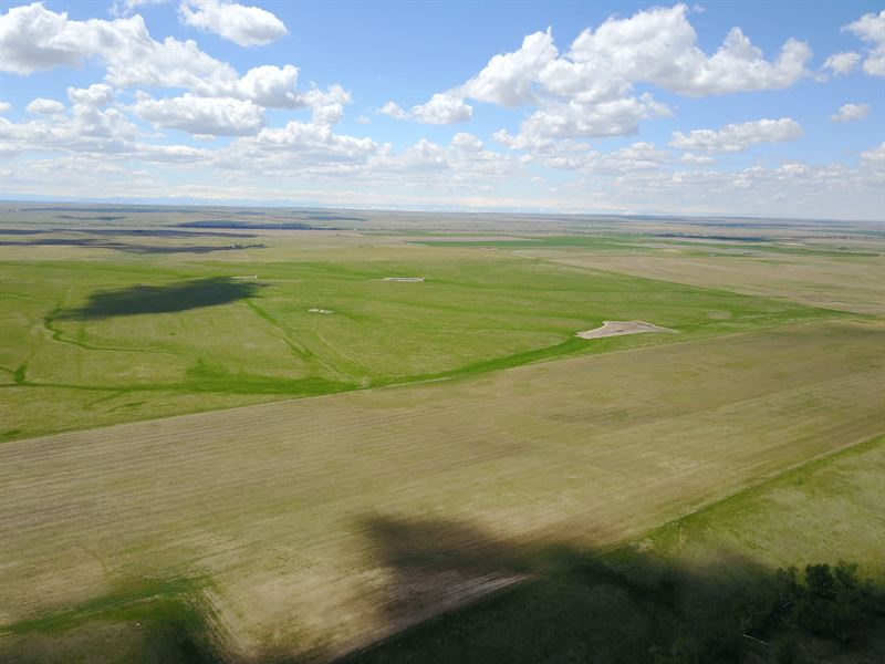 Comanche Creek Farm, Ranch And Recr : Bennett : Elbert County : Colorado