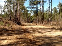 Land For Sale In Mathiston,Ms : Mathiston : Choctaw County : Mississippi