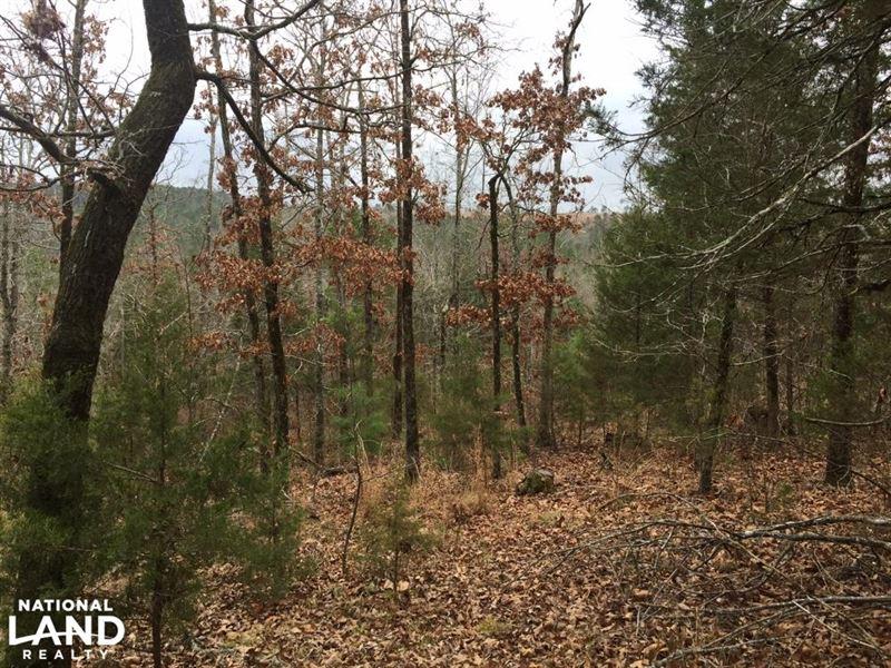 24 Acres Timberland & Hunting Pr : Delaware : Logan County : Arkansas