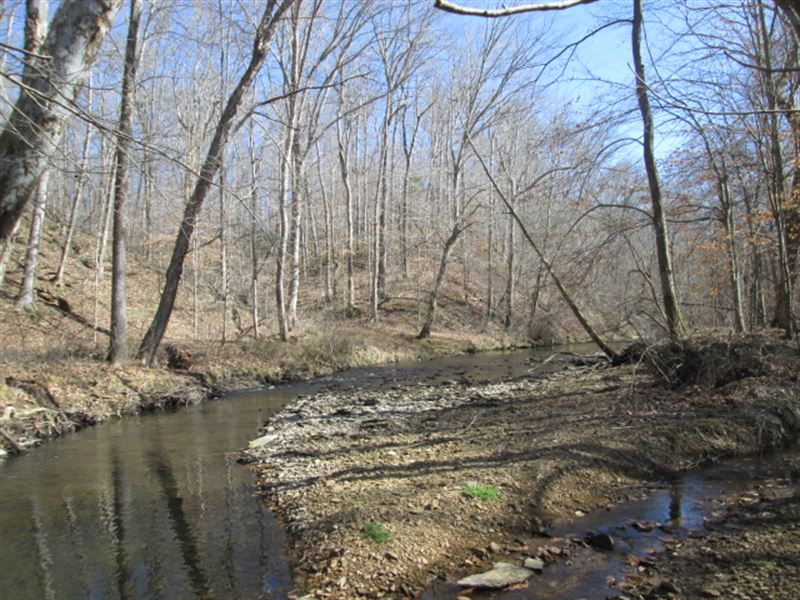 20.25 Acres In Adair County, Ky : Columbia : Adair County : Kentucky