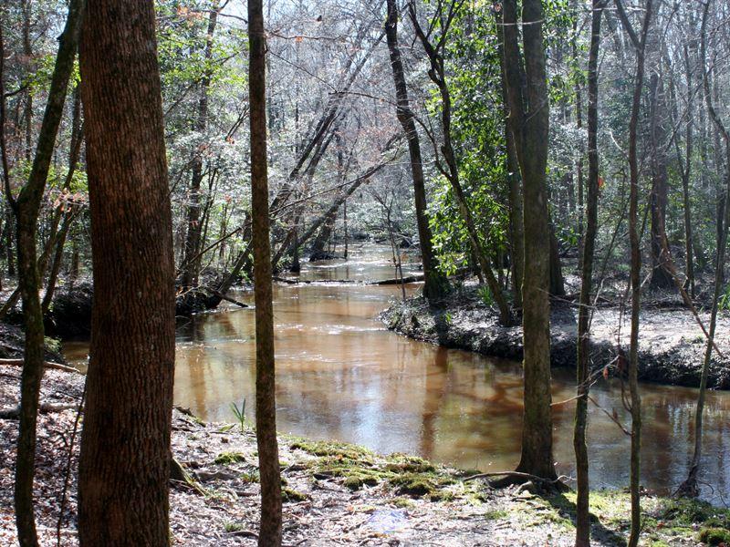 Lanahassee Creek : Preston : Webster County : Georgia