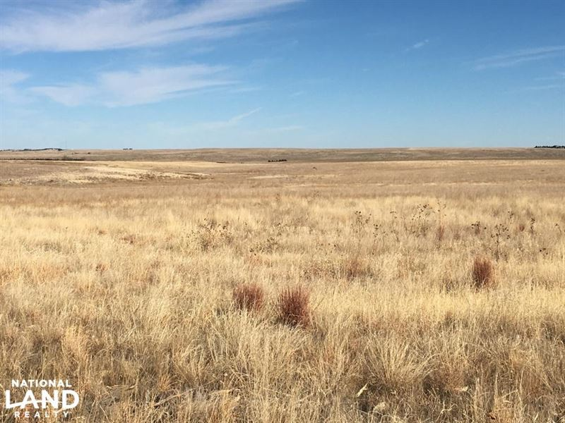 Crp For Sale - Income Producing Eas : Stratton : Kit Carson County : Colorado