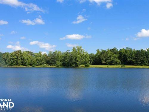 Montevallo Farm : Montevallo : Shelby County : Alabama