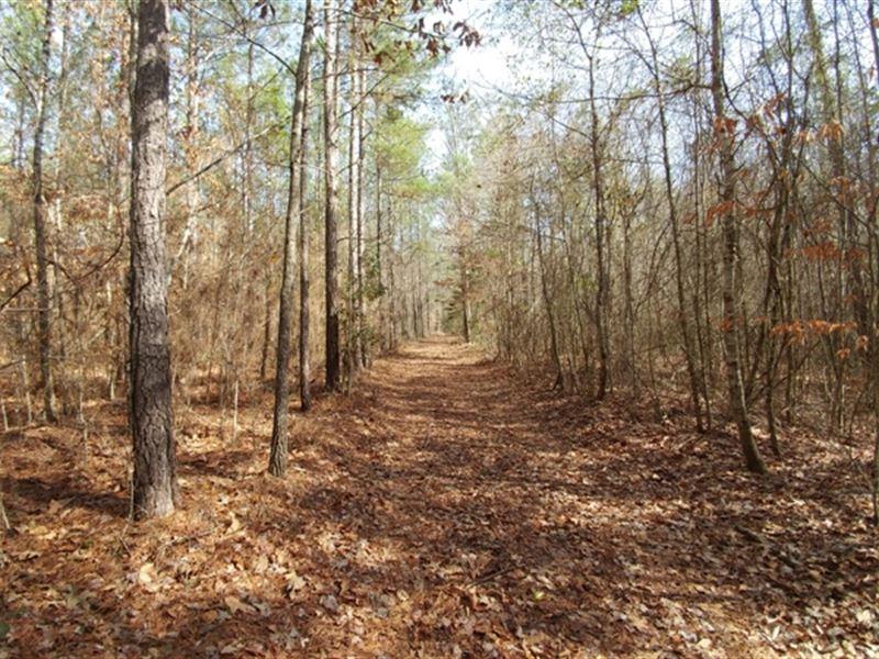Chappells Creek : Danville : Wilkinson County : Georgia