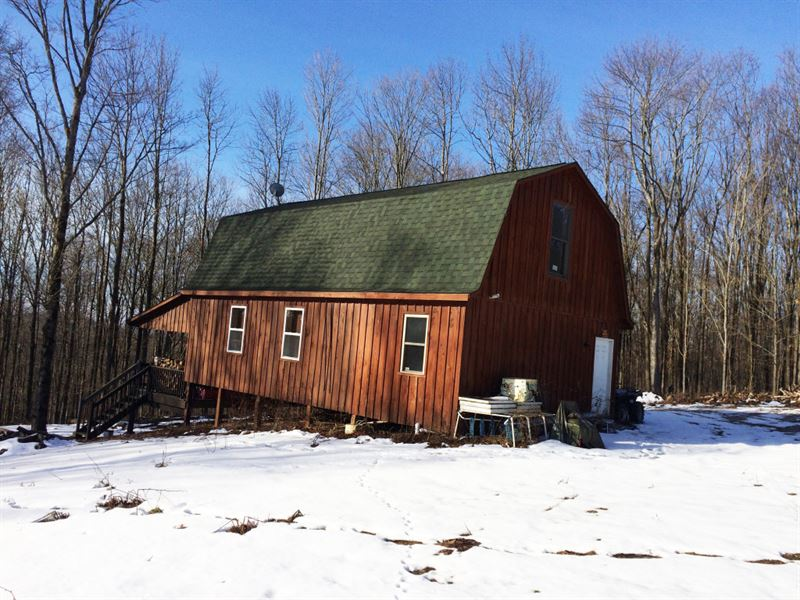 14 Acre Cabin Near Ellicottville Ny : Lyndon : Cattaraugus County : New York