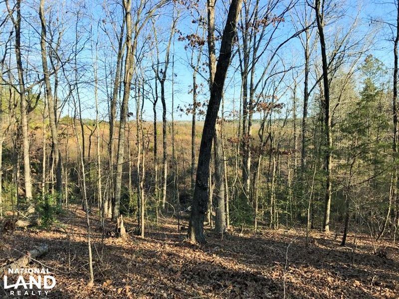 Kershaw Hunting Hardwood Timber Tra : Kershaw : Kershaw County : South Carolina