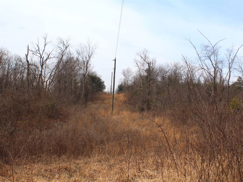Deemer Rd - 62 Acres : Jackson : Jackson County : Ohio