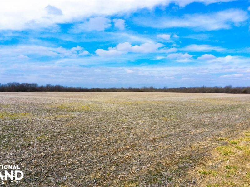 Highly Productive Tillable Farm Nea : Lincoln : Benton County : Missouri
