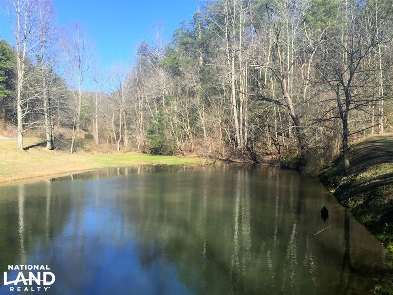 Large Smoky Mountain Cabin Lot : Sevierville : Sevier County : Tennessee