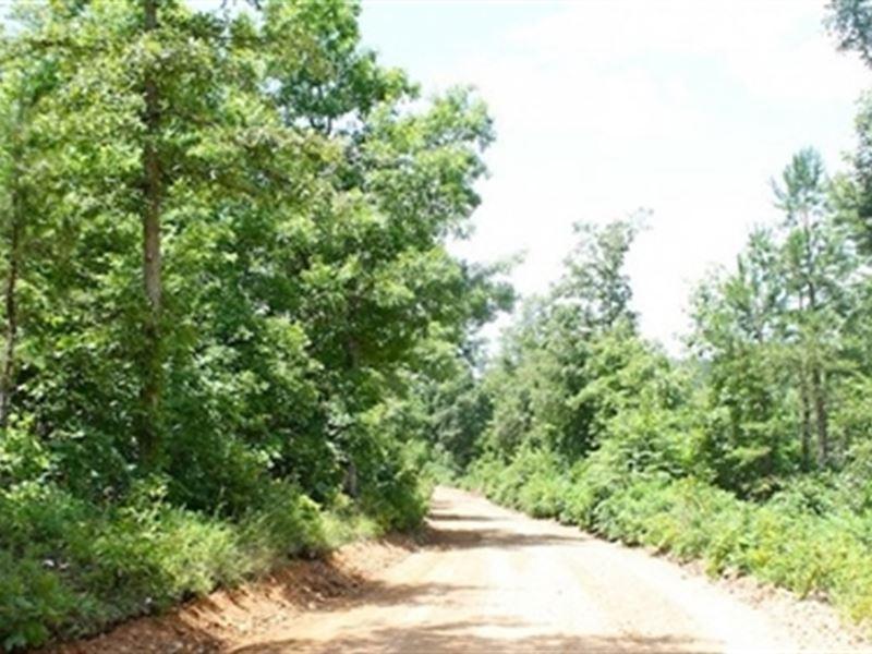 Missouri, Shannon County : Winona : Shannon County : Missouri