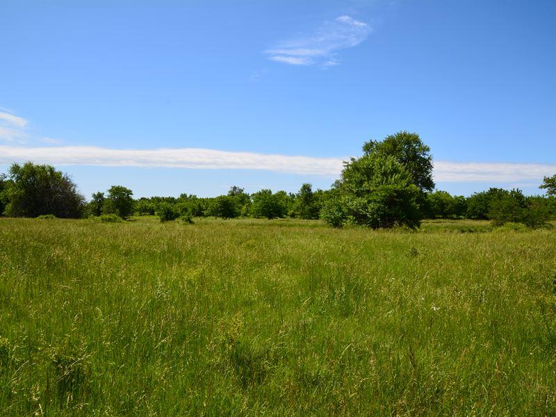 The Wildlife Haven : Fort Scott : Bourbon County : Kansas