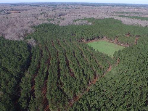 46-009 Persimmon Creek : Tuskegee Institute : Macon County : Alabama