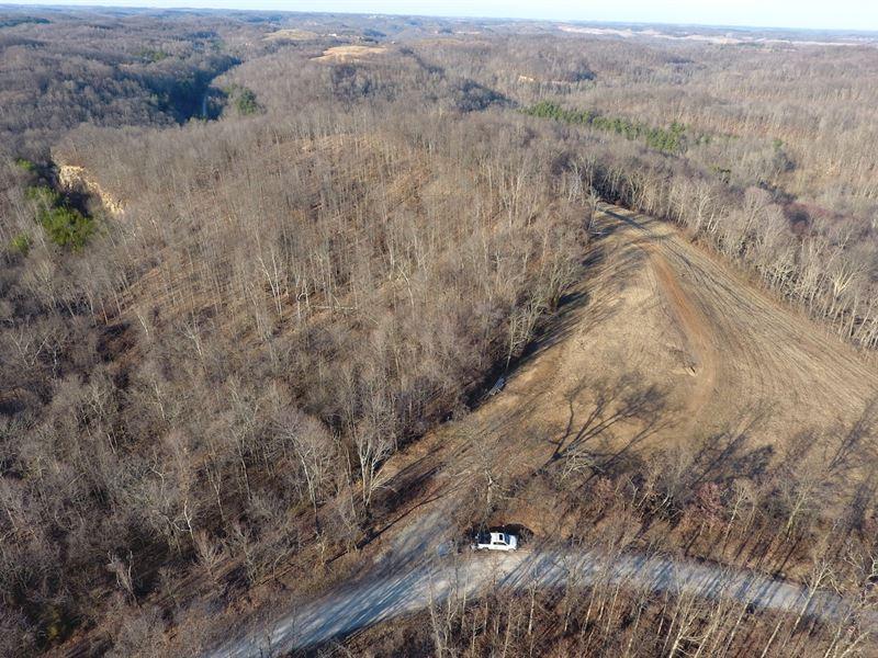 Goose Run Rd - 54 Acres : Dexter City : Noble County : Ohio