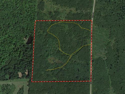 Wooded Acreage With Diverse Habitat : Deerbrook : Langlade County : Wisconsin