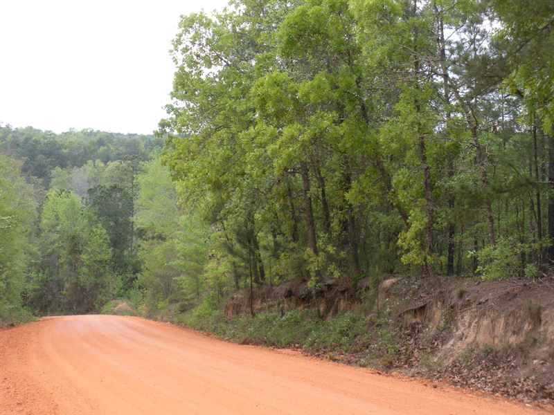 Oak Grove County Road 62 : Pine Level : Autauga County : Alabama