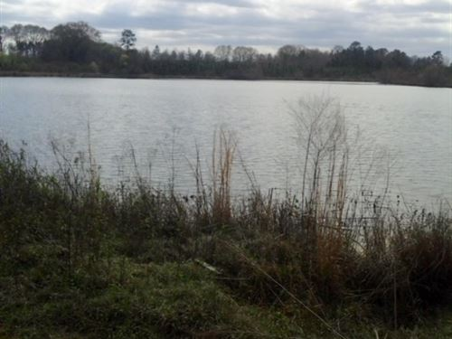 Price Reduced- Land, Pond Wilcox Co : Abbeville : Wilcox County : Georgia