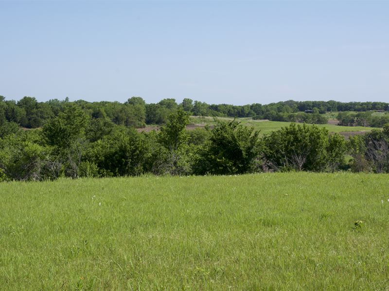 Osage Hunting Tract : Overbrook : Osage County : Kansas