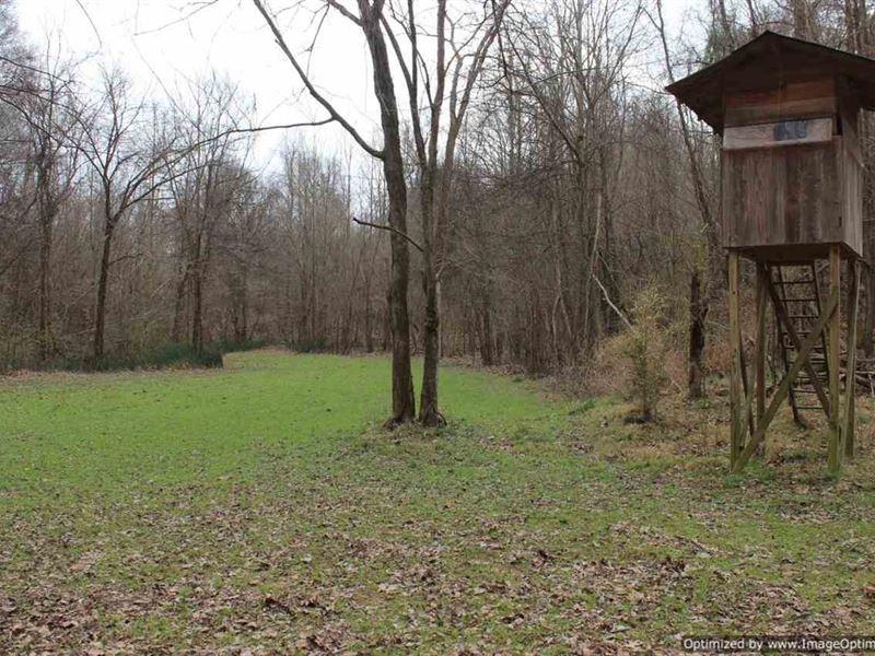 Recreational/Estate Property : Vicksburg : Warren County : Mississippi