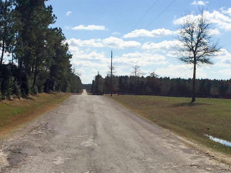 58 Acres Brooks Rd. : Corrigan : Polk County : Texas