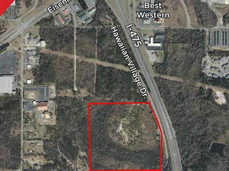 Estate Auction - 48+/- Acres : Macon : Bibb County : Georgia