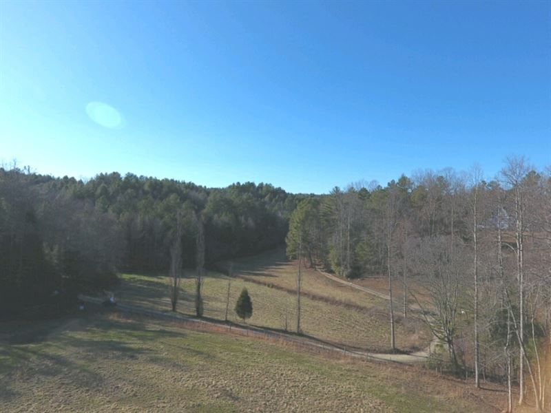 31 Acres Of Open & Wooded Land : Ellijay : Gilmer County : Georgia
