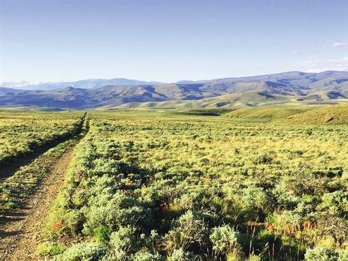 Colorado Mountain Acreage : Gunnison : Colorado
