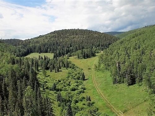 Ten Grand Ranch : Powderhorn : Gunnison County : Colorado