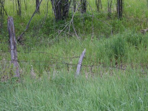 Little Cimmaron Ranch : Gunnison : Colorado