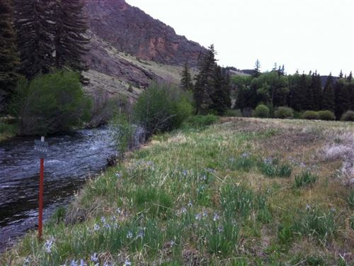 River Sanctuary : Powderhorn : Hinsdale County : Colorado
